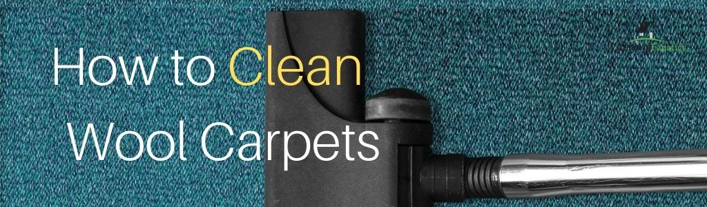 How to Clean Wool Carpets, Vacuum Fanatics